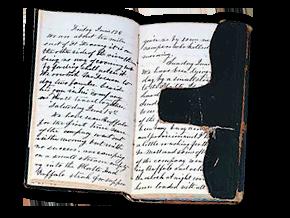 diary Bluzka